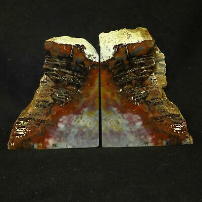 Exquisite HANDMADE AZ Rainbow Petrified Wood Bookends 12+ lbs 200 Million Years