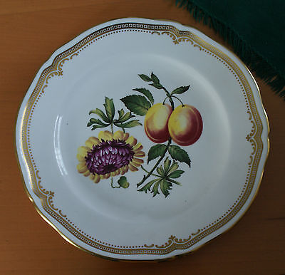 Spode Flowers and Fruit series plate