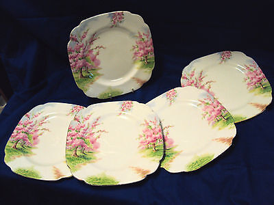 Set of 5 Royal Albert  Blossom in Time Tea Plates