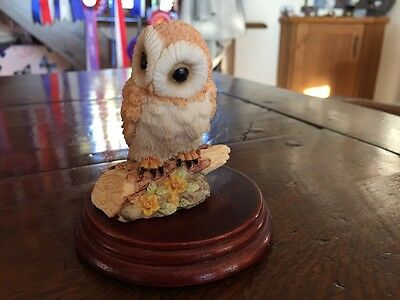 Cute Barn Owl, by Regency Fine Arts