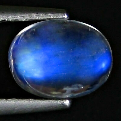 Natural Moon Stone 1.92 Cts Royal Blue Color Oval Shape Loose Gemstone