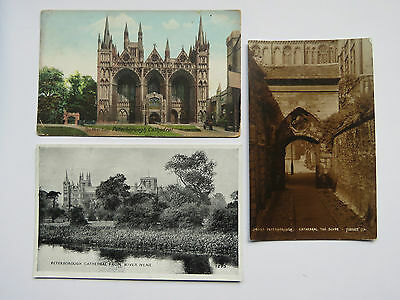 3x Vintage 1908-50s Peterborough Cathedral real photo postcards