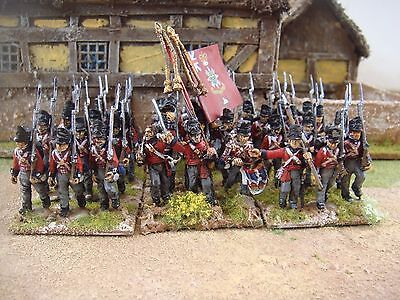 Warlord British Waterloo Napoleonic Infantry Painted To Order