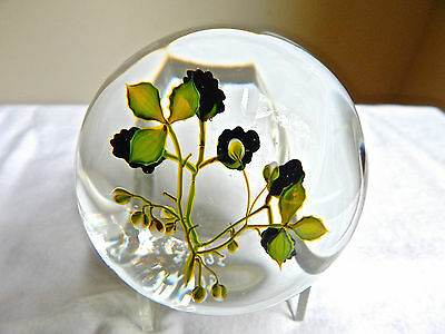 """Vintage Paul Stankard """"compound Blackberry"""" Paperweight Le 1975"""