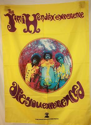 RARE JIMI HENDRIX Are You Experienced? Cloth Fabric Poster Flag Tapestry-New!!!