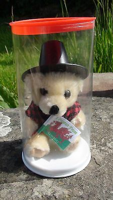 Cute Welsh Souvenir 'bronwen' Bear From New Quay, Wales Uk