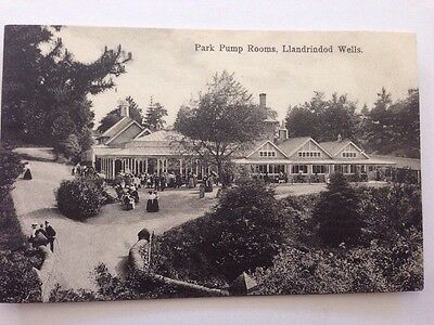 Vintage Postcard Park Pump Rooms Llandrindod Wells
