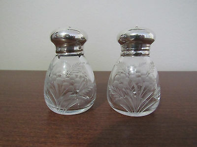 Wilcox  Sterling Silver & Crystal Salt and Pepper Shaker Set of 2