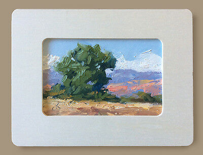 TREE, MOUNTAINS, FRAMED IMPRESSIONIST PLEIN AIR OIL PAINTING by TOM BROWN