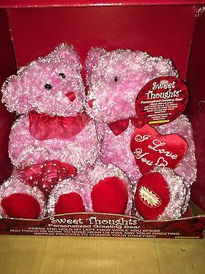 Personalize Your Own Recording Love  Dandee Greeting Bears Plush Pink