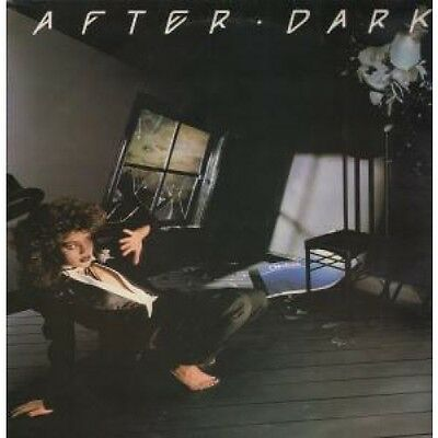 AFTER DARK COMPILATION Various LP VINYL 14 Track Featuring Reo Speedwagon, Jeff
