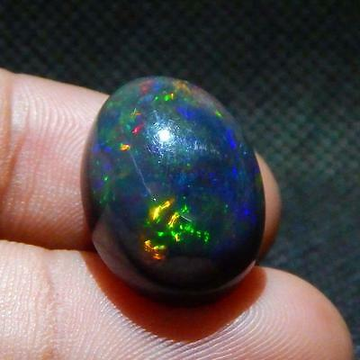 14.3 cts Nice Black Ethiopian Opal Top Multi Color Play Fire Cab {Video} L#156-1