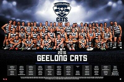 """Afl Geelong Cats 2016 Team Poster """"official & Licensed"""" Brand New"""