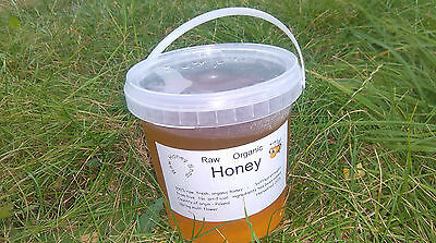 Raw Wildflower Honey 1500g EXTREMELY HEALTHY AND TASTY - ORGANIC harvested 2016