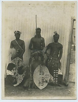 Photo Of Zulu Warriors In South Africa c1900s No. 2