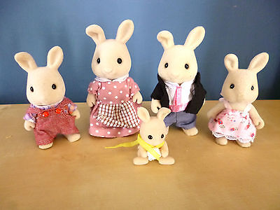 Family of Rabbits with baby