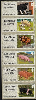 Great Britain 2012 Mint British Farm Animals 2 Pigs  Stamps Set  Self-adhesive,
