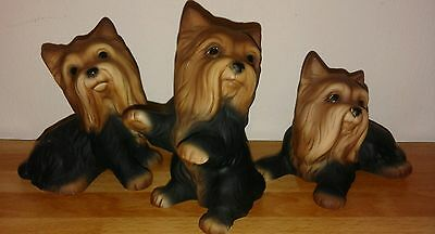 HHH (Harvey Knox) Ceramic Yorkshire Terrier Collectable Figurines x 3 Stunning!