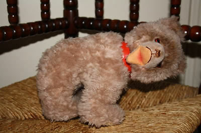 Hermann 1950s Zotty Bear Cub With Red Collar