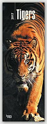 Tigers 2017 Slimline Wall Calendar NEW by Browntrout