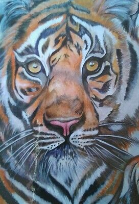 Tiger fine Art print, limited edition