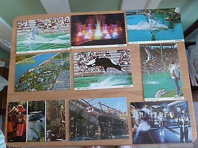 Postcards - Disney resort