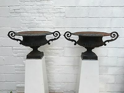Vintage Cast Iron Planters, Cast Iron Victorian Style Urns - Pair of Urns