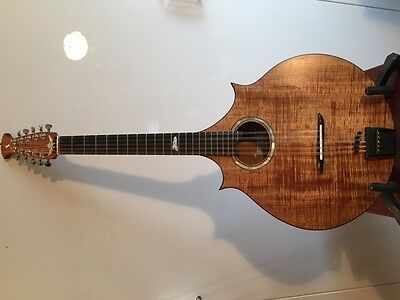 Ten String Octave Mandolin, Cittern or Ten String Irish Bouzouki short scale
