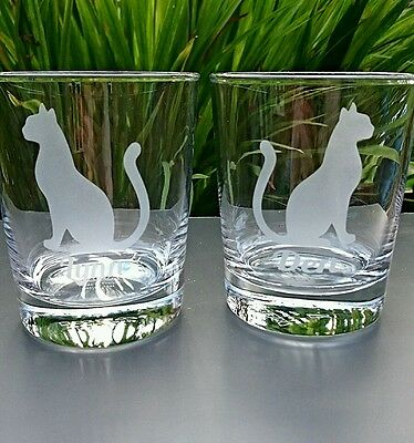 Engraved Cat Tumbler Glass - New - Personalised