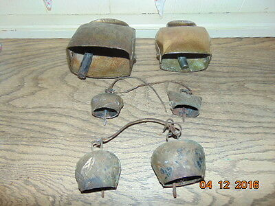 Six French  Vintage Cow & Goat Bells