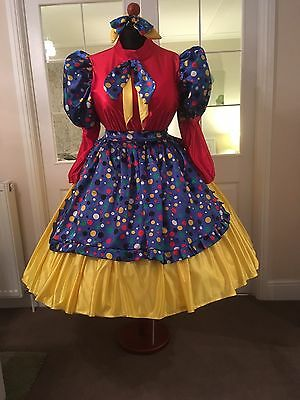 pantomime dame costume (new)