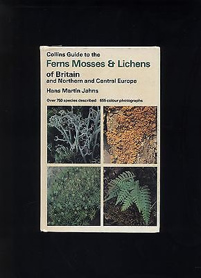 collins guide ferns, mosses & lichens of britain & central europe / jahns