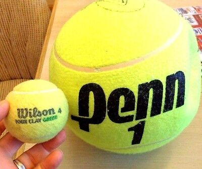 Tennis ball autographed large