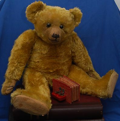 """Superb Condition 24"""" Top Quality Golden Mohair 1920's Antique Farnell Teddy Bear"""