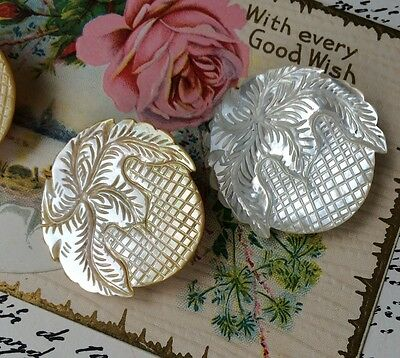 """An Amazing Vintage Carved Mother of Pearl Button 1.5"""" Round Foliage Squares MOP"""