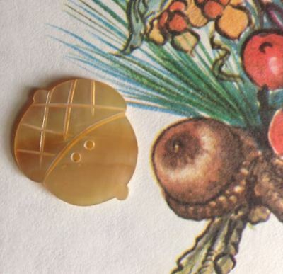 2 Vintage Carved Mother of Pearl MOP Acorn Buttons So Pretty Fall