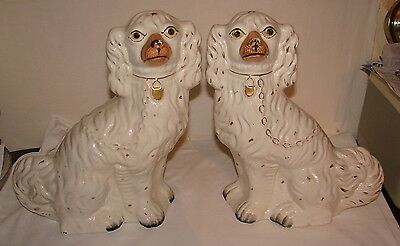 2 Large Staffordshire Flatback Spaniel Dogs- Curley Tails
