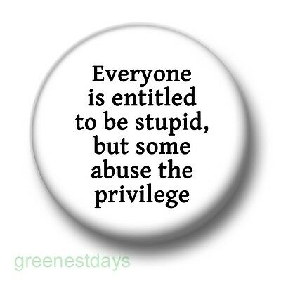Everyone Is Entitled To Be Stupid 1 Inch / 25mm Pin Button Badge Insult Cheeky