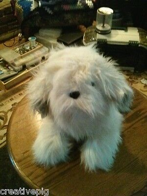 Shaggy Long haired Grey & White Old English Sheepdog Puppy