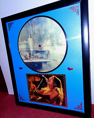 Red Hot Chili Peppers : Desecration Smile : Framed Picturedisc Display