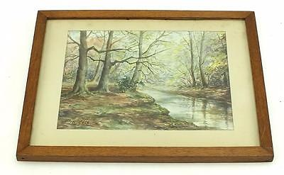 20thC Watercolour Scotish Painting - Highland Forest Mountain Picture Frame
