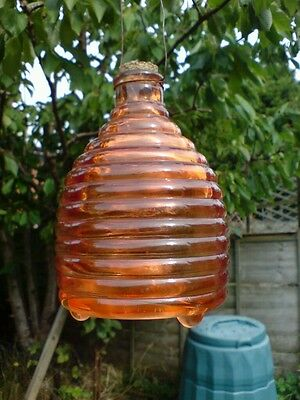 Traditional Large Glass, Beehive Shaped Wasp and Insect Catcher.