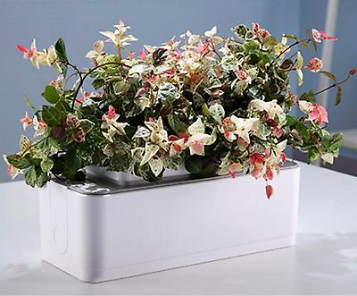 ALL-IN-ONE PORTABLE MINI GARDEN Hydroponics Battery Operated Grower For Home