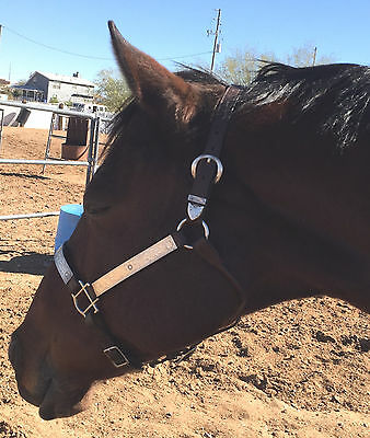 FLEMING Silver Overlaid Show Halter - fits Average to Larger horse head GORGEOUS