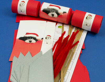 8 Red Cute Christmas Puppy Make & Fill Your Own Cracker Kit for Dog Lovers