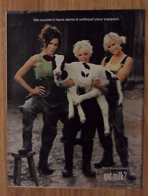 2000 Print Ad GOT MILK? ~ The DIXIE CHICKS Natalie with Calf Country Pop Music