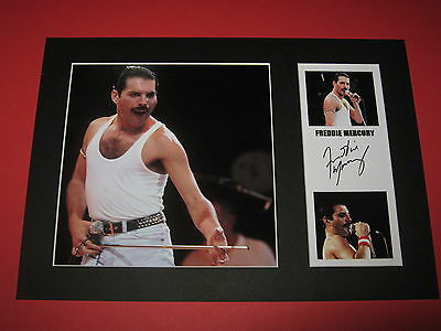 Freddie Mercury Queen A4 Photo Mount Signed Autograph Reprint  Brian May Ticket
