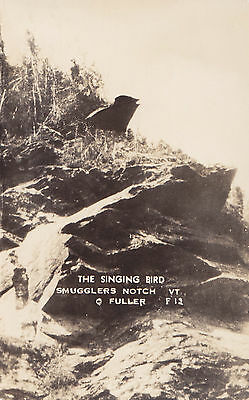 The Singing Bird Smugglers Notch VERMONT © Clayton Fuller Real Photo Postcard