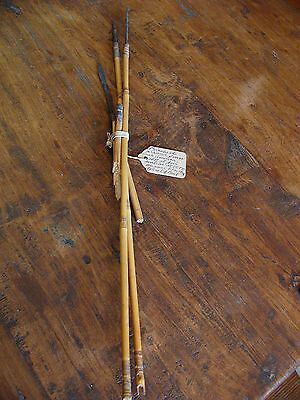 WWII Piosoned Arrows from South America War Peasant Fight Weapon 1943 RARE!!