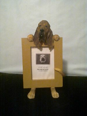 Bloodhound Small Picture Frame CLEARANCE SALE Last One